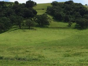 california-hills