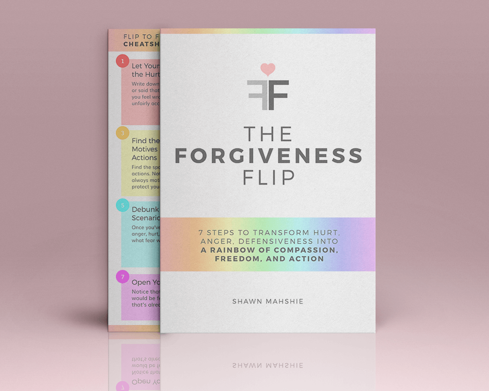 The forgiveness flip by shawn mahshie