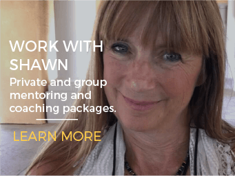 Work with Shawn Mahshie Mentoring and Coaching Programs
